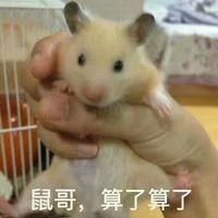 情侣头像qqjay