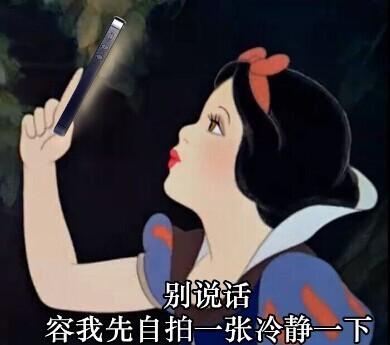 白雪公主戏精表情微信表情套图表情包诅咒防图片