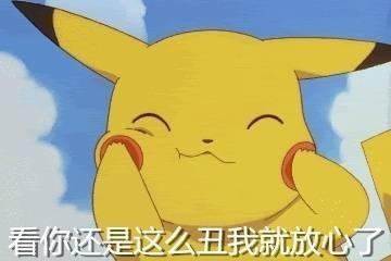 皮卡丘可爱浣熊经典表情小表情动画表情图片
