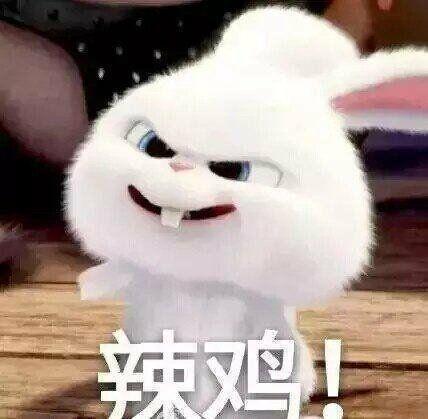 辣鸡兔子表情图片破财表情包的表情图片