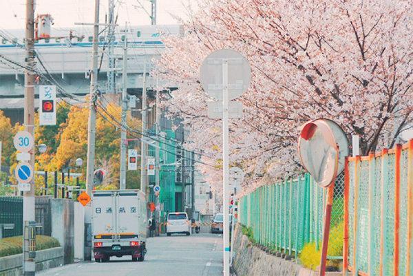 日系清新街景图片.jpg