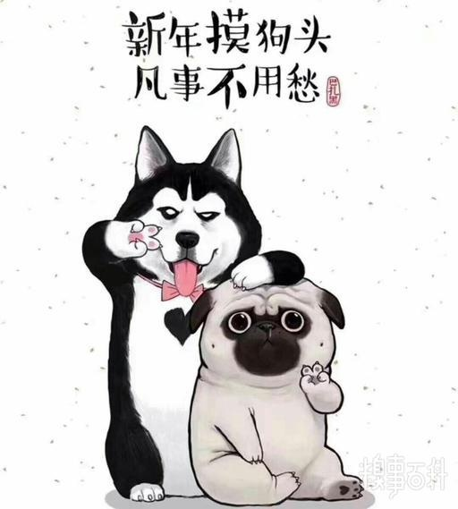 新年摸狗头凡事不用愁表情包.jpg