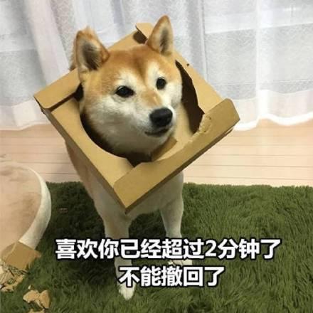 狗子图片不喜欢笑脸撤回你表情微信表情表情表情难受表情包图片