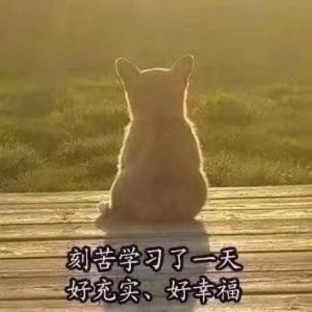 刻苦学习了一天表情微信表情狗子表情.jpg