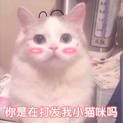 你在打发我吗表情微信表情猫咪表情.jpg