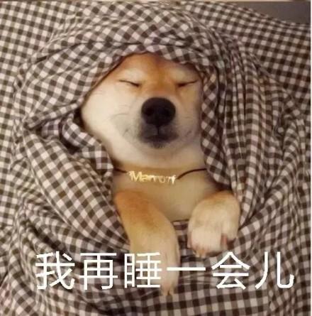 我再睡一会儿表情微信表情柴犬表情.jpg