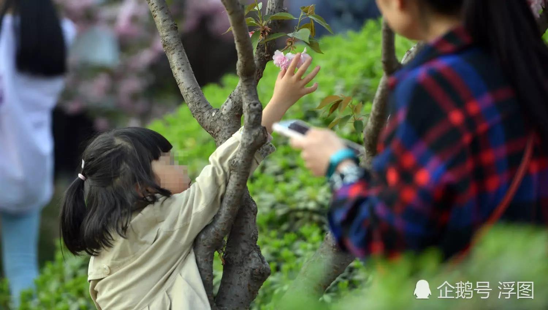 """""""爱我但别碰我"""".webp.jpg"""