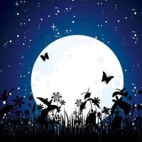 精选好听有关月亮的歌曲,每首歌都代表了思念之情