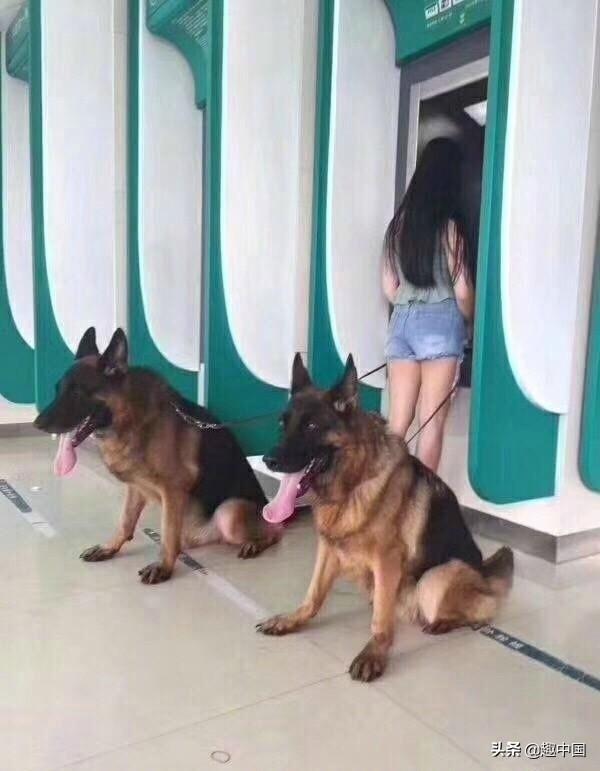 这才是ATM取钱的正确方美女恶搞路人式,了解下